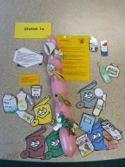 Ausbildung zum Müllexperten