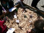 Abfallverwertung - Von wegen Abfall! Wir kompostieren! (Teil 5)